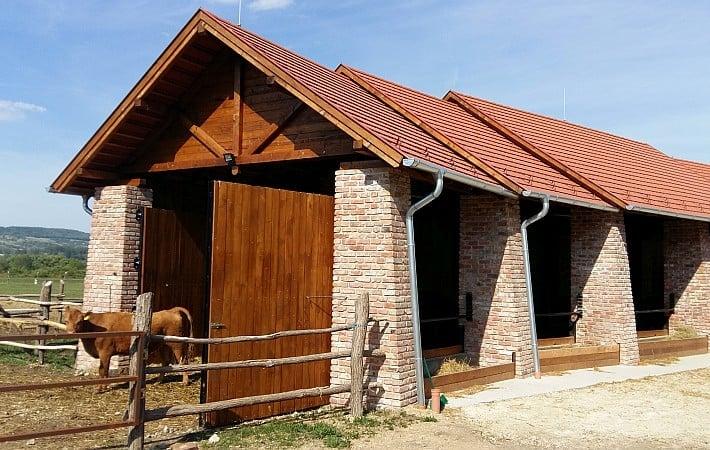 Prihranek energije in stroškov s sodobno streho